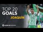 TOP 20 GOALS Joaquín en LaLiga Santander