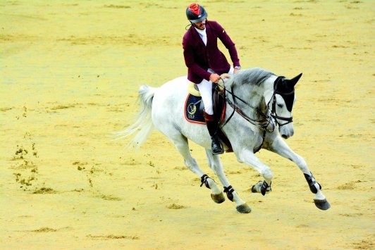 Longines Hathab: Action to resume on August 7